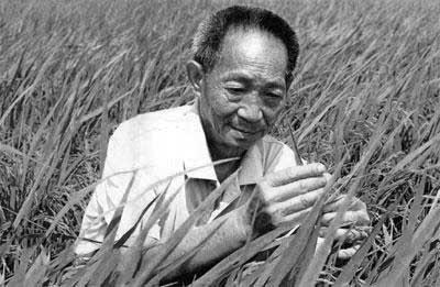 """哀悼!""""杂交水稻之父""""袁隆平院士逝世 享年91岁"""