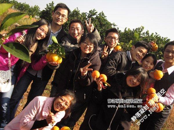 腊月橙园行